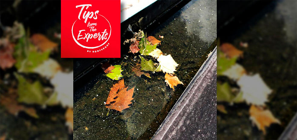 Should I keep my home's gutters clean?